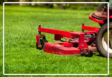 Website_450x300-lawn mower3