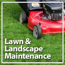 Lawn Maint button