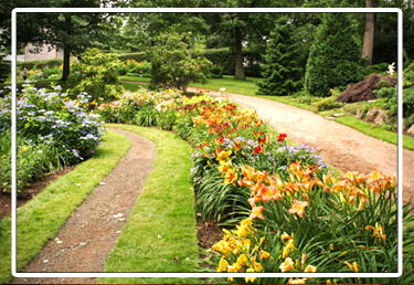 landscape design is one of our service offerings