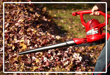 leaf and lawn clean up