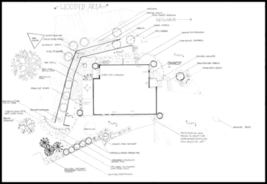 landscape design installation sketch
